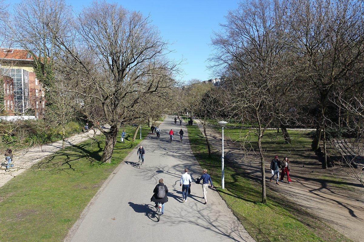 AnnemiekeMolster-lopen-fietsen